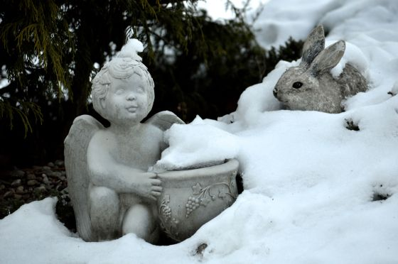 Snow Angel and Rabbit2
