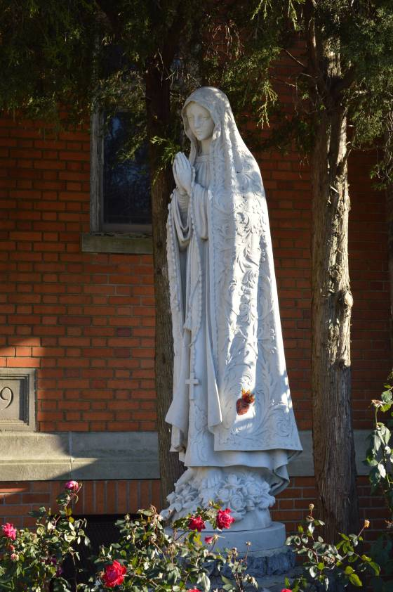 Our Lady of Fatima UC - roses