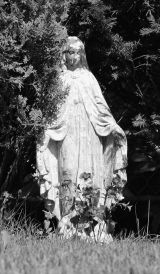 Our Lady of the Evergreens